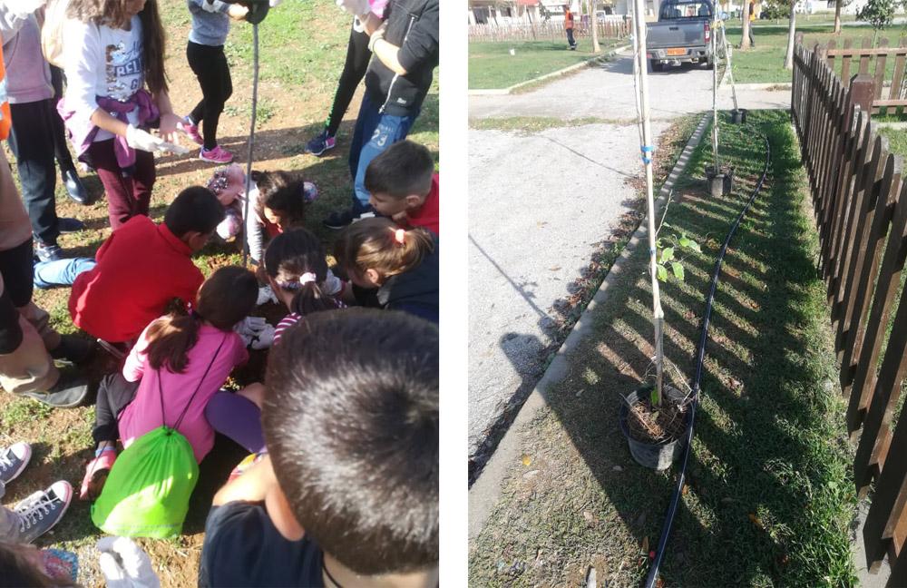 Δενδροφύτευση στο Πάρκο Ποιμενίδη από μαθητές
