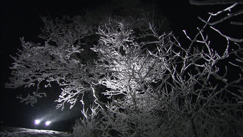 Χιονόπτωση στον Έβρο προβλέπεται κατά τη διάρκεια της νύχτας