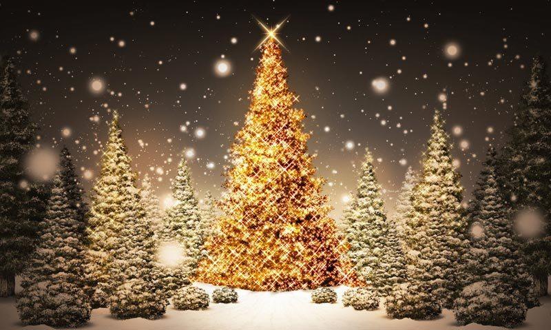 Η μελαγχολική λάμψη των Χριστουγέννων