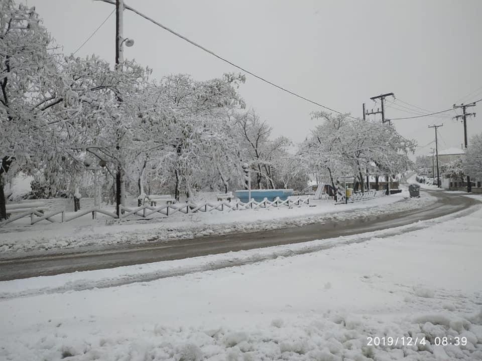 Τα πρώτα χιόνια για φέτος «στόλισαν» κεντρικό και βόρειο Έβρο αλλά και ορεινές περιοχές του