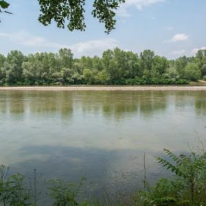 Άρση απαγόρευσης αλιείας στους ποταμούς του Έβρου