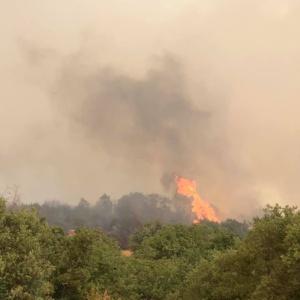 Έρευνα από πυροσβεστική-ΕΛ.ΑΣ. για τις 15 πυρκαγιές σε 48 ώρες στον Έβρο