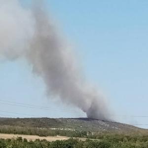Νέα φωτιά στο Αρδάνιο, αντιμετωπίστηκε έγκαιρα