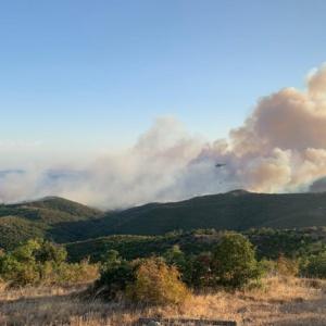 Συνεχίζεται η καταστροφή στην περιοχή της Νίψας