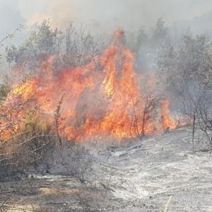 Προς τον πυρήνα του δάσους η πυρκαγιά στη Λευκίμη, μεγάλη η μάχη των δυνάμεων